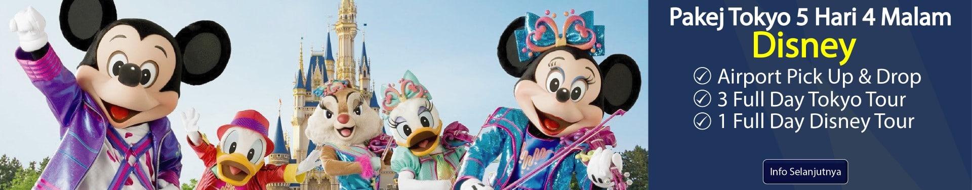 Tokyo 5H4M Disney-01-01 (Large)