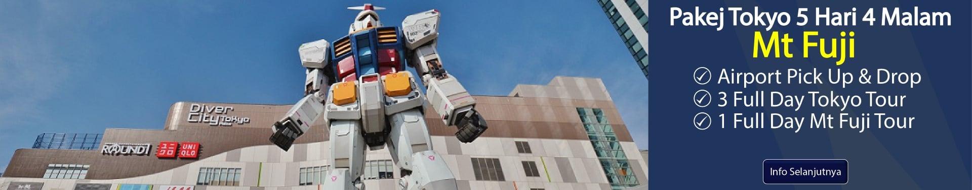 Tokyo 5H4M Fuji-01-01 (Large)