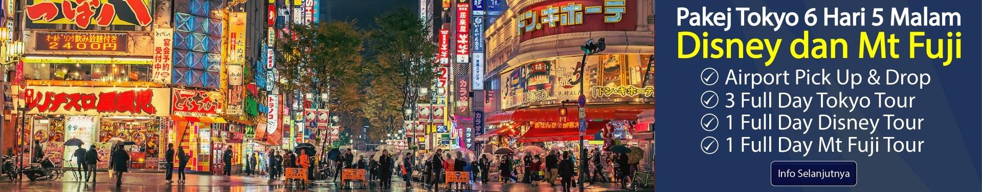 Tokyo 6H5M Disney Fuji-01 (Large)